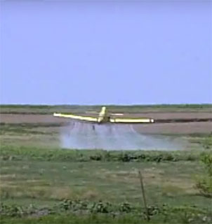 Pesticides video cover